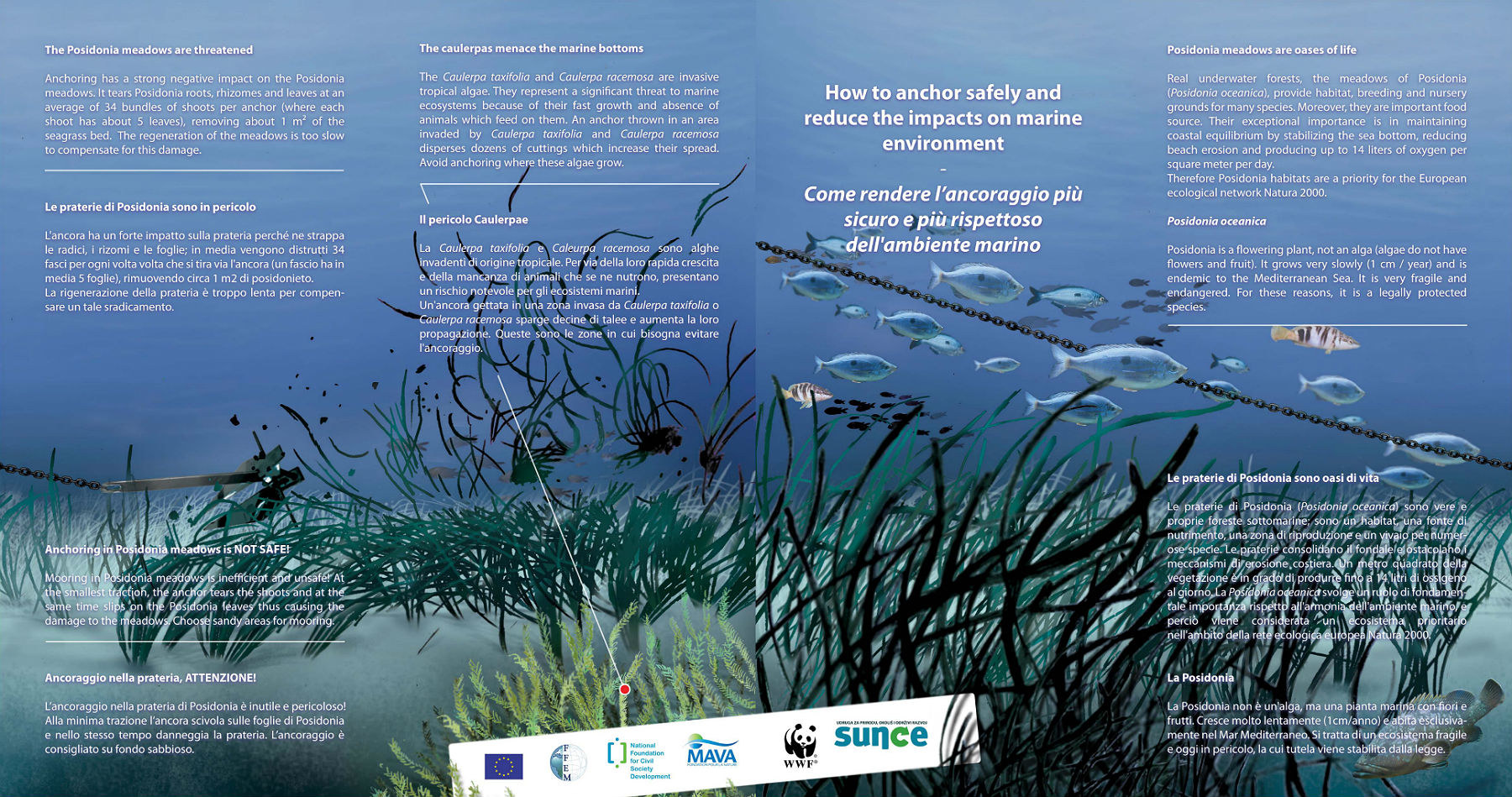 How to anchor safely and reduce the impacts on marine environment